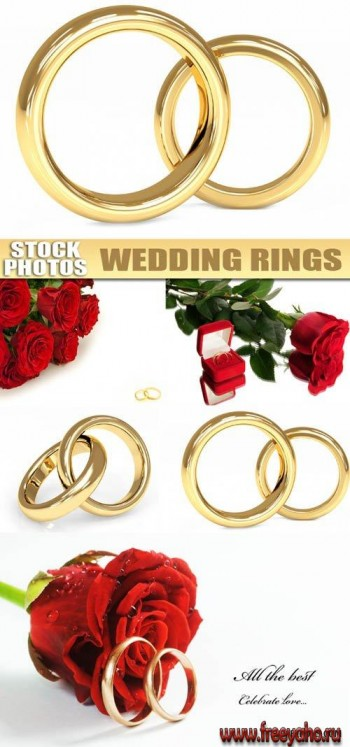 Wedding rings | ��������� ������