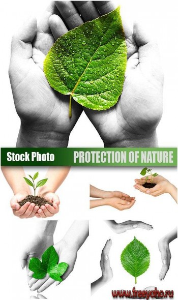 Stock Photo - Protection of nature | Защита природы