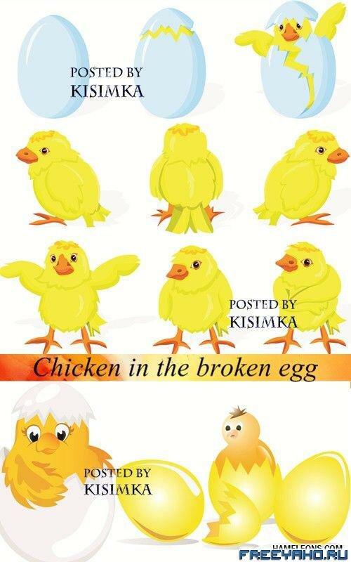 клипарт яйцо:
