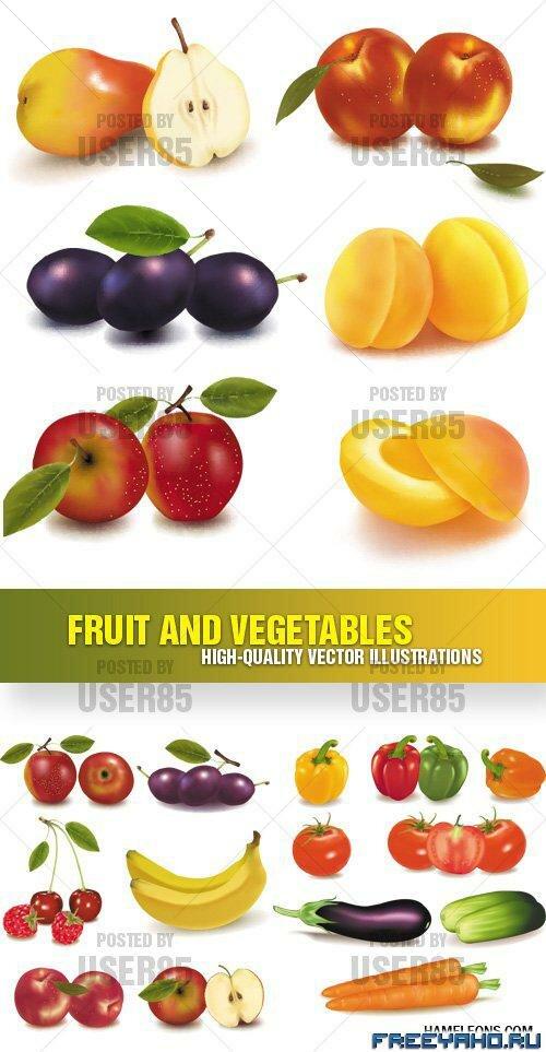 Фрукты овощи и ягоды в векторе