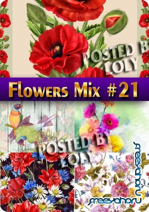 Flowers Mix #21 - Stock Photo