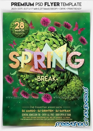 Spring Break V04 2018 Flyer PSD Template + Facebook Cover
