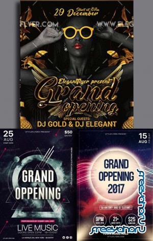 Grand Opening Flyer 3in1 V5 Flyer Template