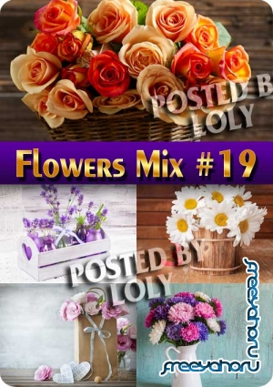 Flowers Mix #19 - Stock Photo