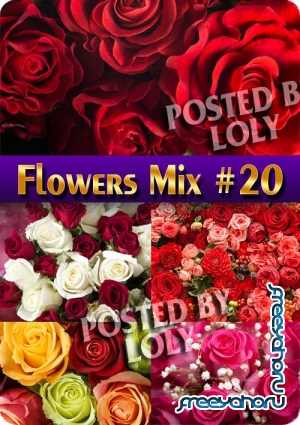 Flowers Mix #20 - Stock Photo